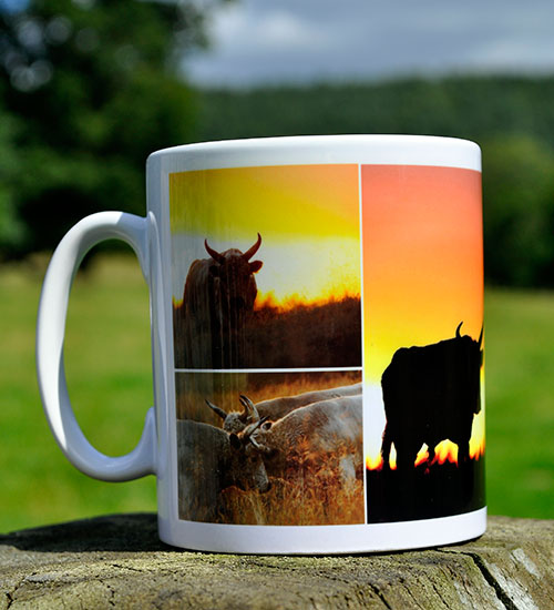Sunset-Mug